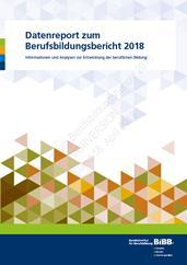 Datenreport zum Berufsbildungsbericht 2018