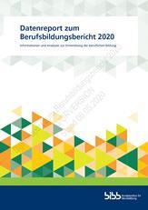 Datenreport zum Berufsbildungsbericht 2020